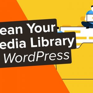 How to Clean up Your WordPress Media Library 2 Easy Methods